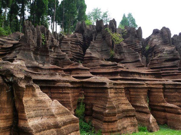 Red-stone Forest Scenic Area.jpg